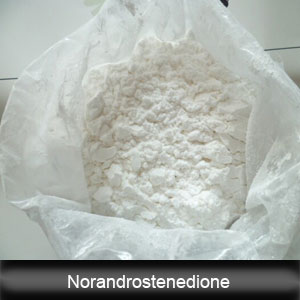 CAS: 734-32-7 Muscle Building Prohormone Steroids Norandrostenedione