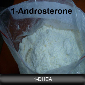 1-Androsterone Prohormones of 1-DHEA Pharmaceutical Powder 76822-24-7