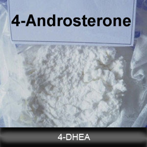 Hot Sale 4-DHEA 571-44-8 Androgen Hormone with Factory Direct Supplying