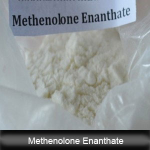 Raw Steroid Powder Methenolone Enanthate Primobolan-Depot for Bodybuilding