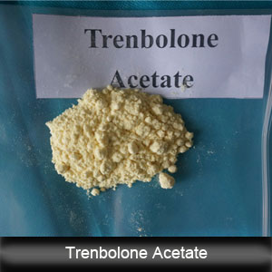 99.2% Trenbolone Acetate (Tren Ace) Effective Homebrew Steroid 10161-34-9