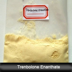 10161-33-8 99.8% Trenbolone Enanthate / Tren E (parabolan) Steroids Hormone