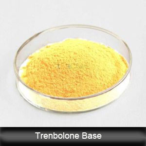 Raw Steroids Powder Trenbolones Base Muscle Growth CAS 10161-33-8