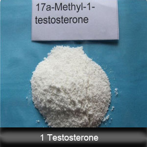 99% Purity 1 Testosterone Powder From China