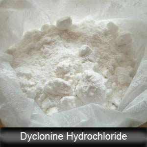 Local Anesthetic Raw Powder Dyclonine Hydrochloride/Procainamide HCl CAS 536-43-6