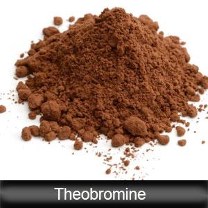 Theobromine Myocardial Excitation Vasodilation Medicine Raw Material CAS 83-67-0